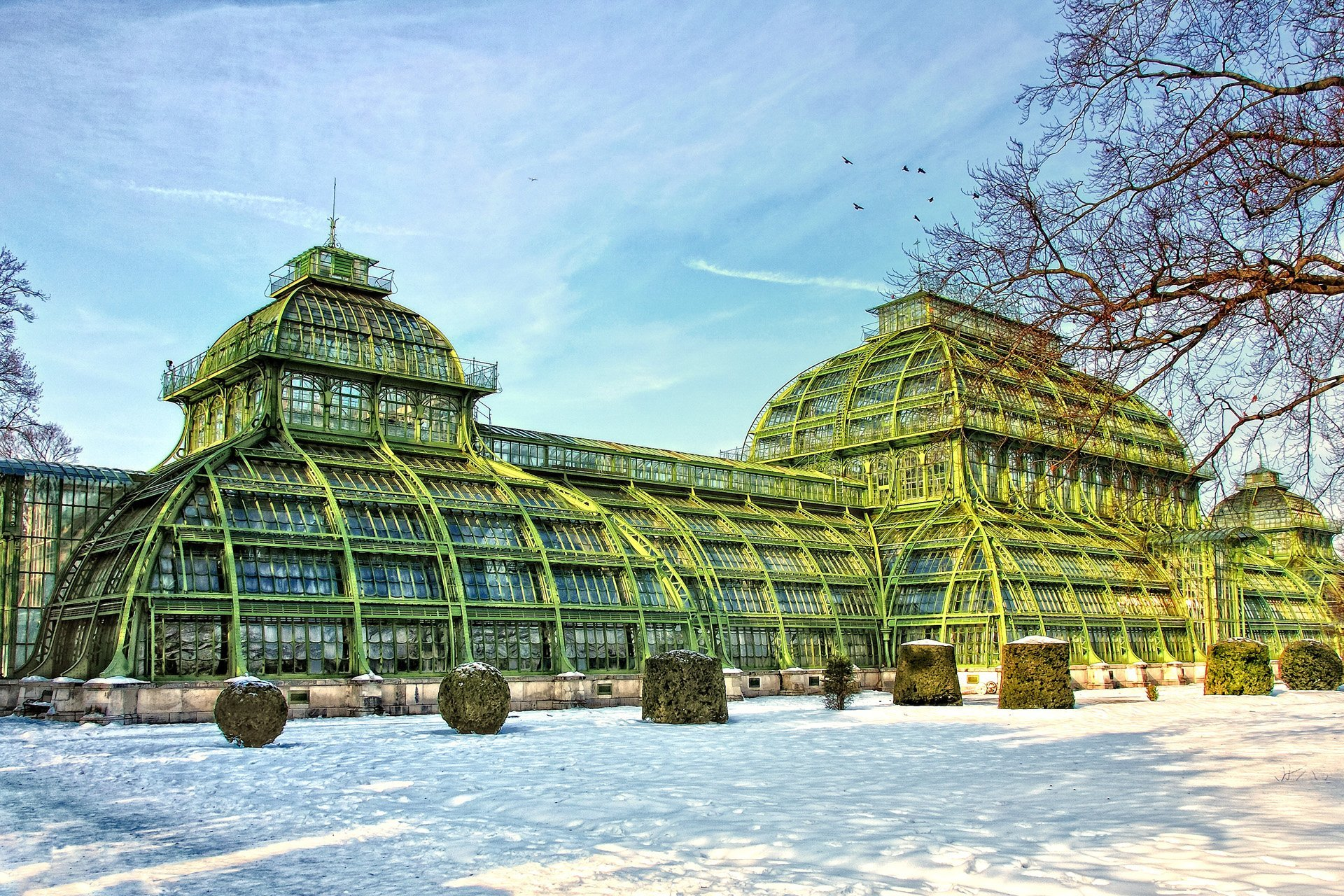 palmiye evi