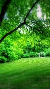 park manzarası 1080x1920