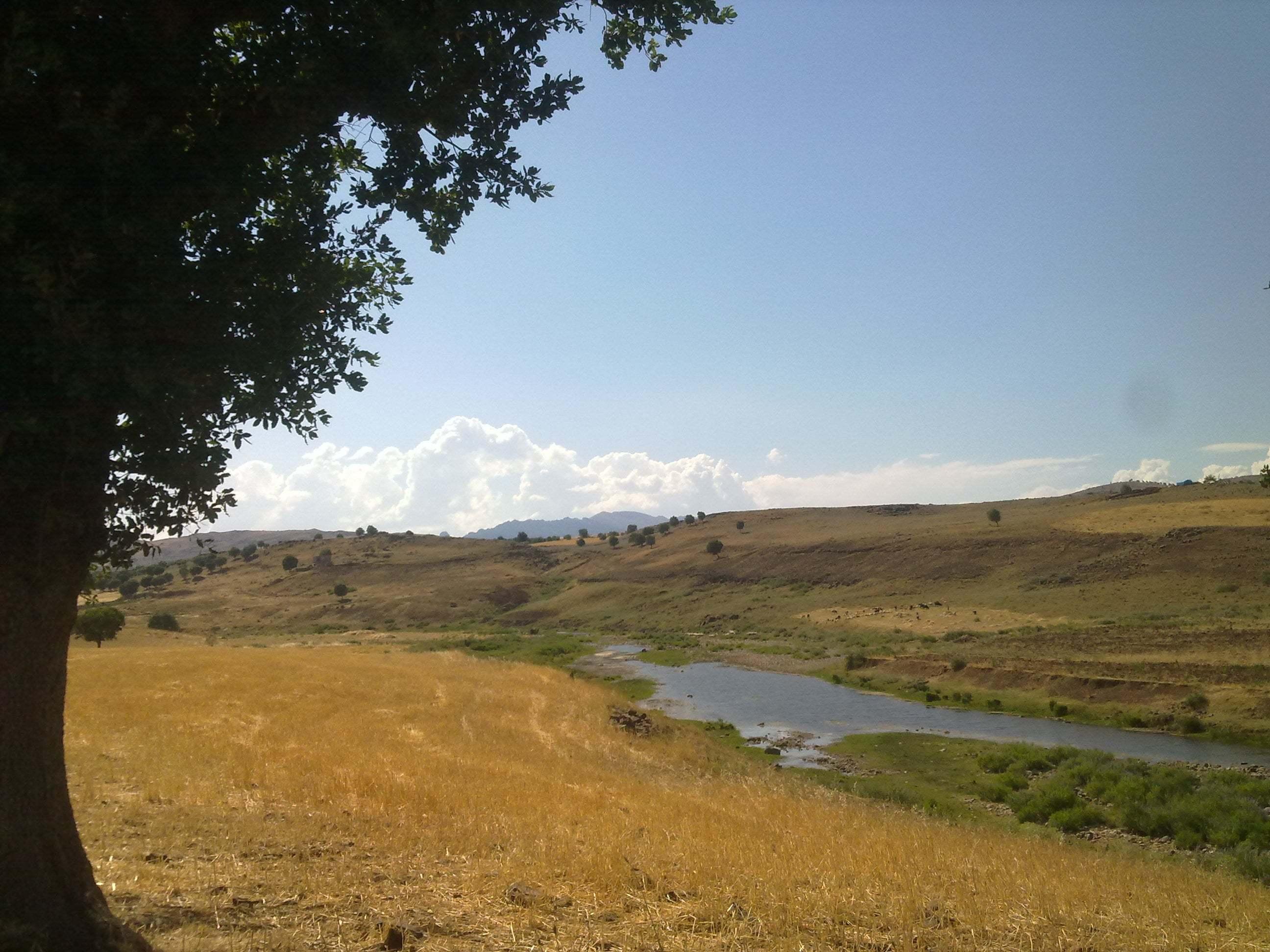 petekkaya köyü