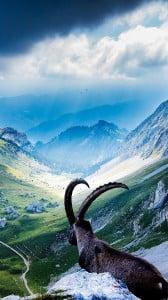 pilatus dağı 1080x1920