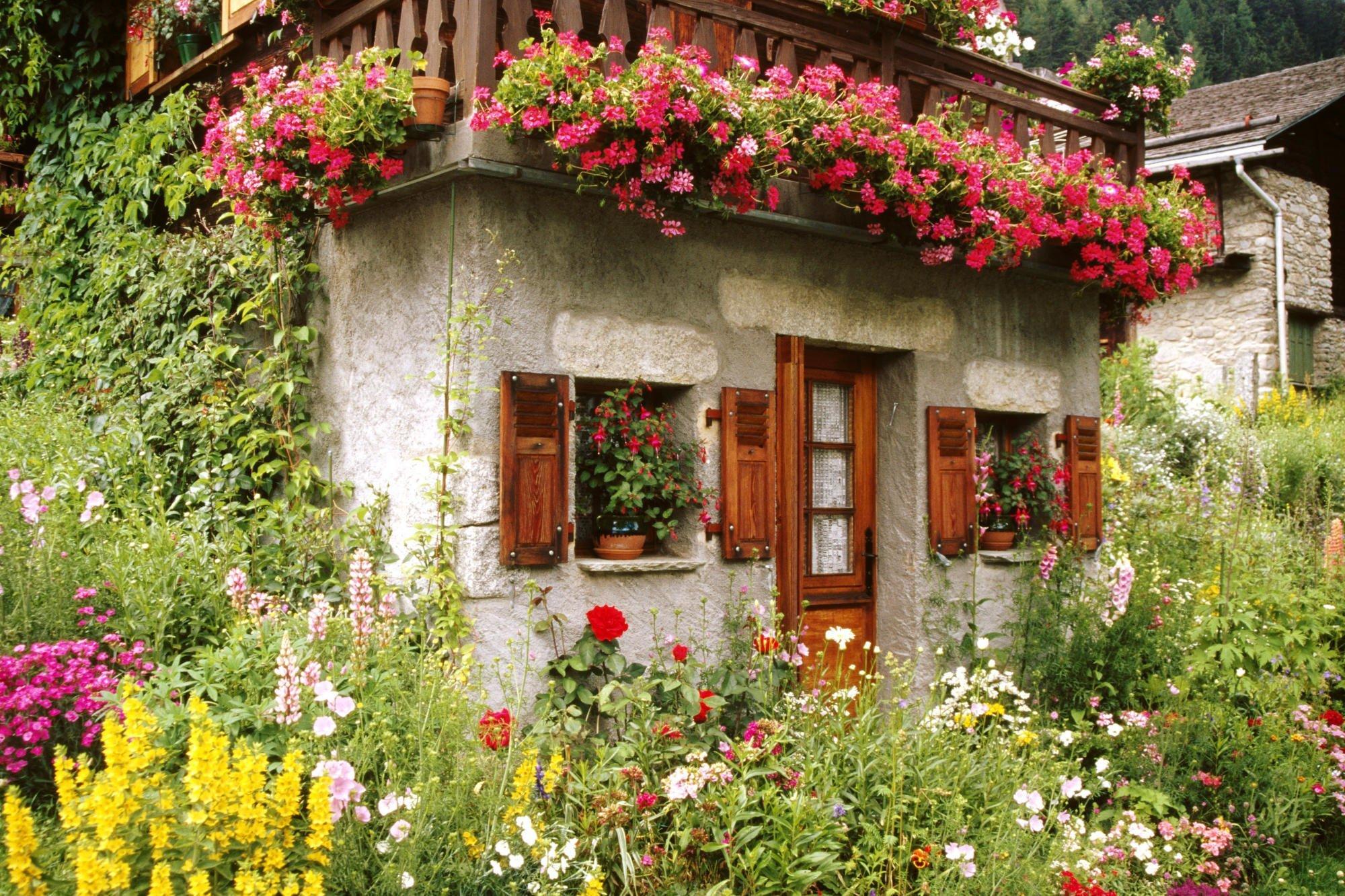 Renkli bahçeler-1