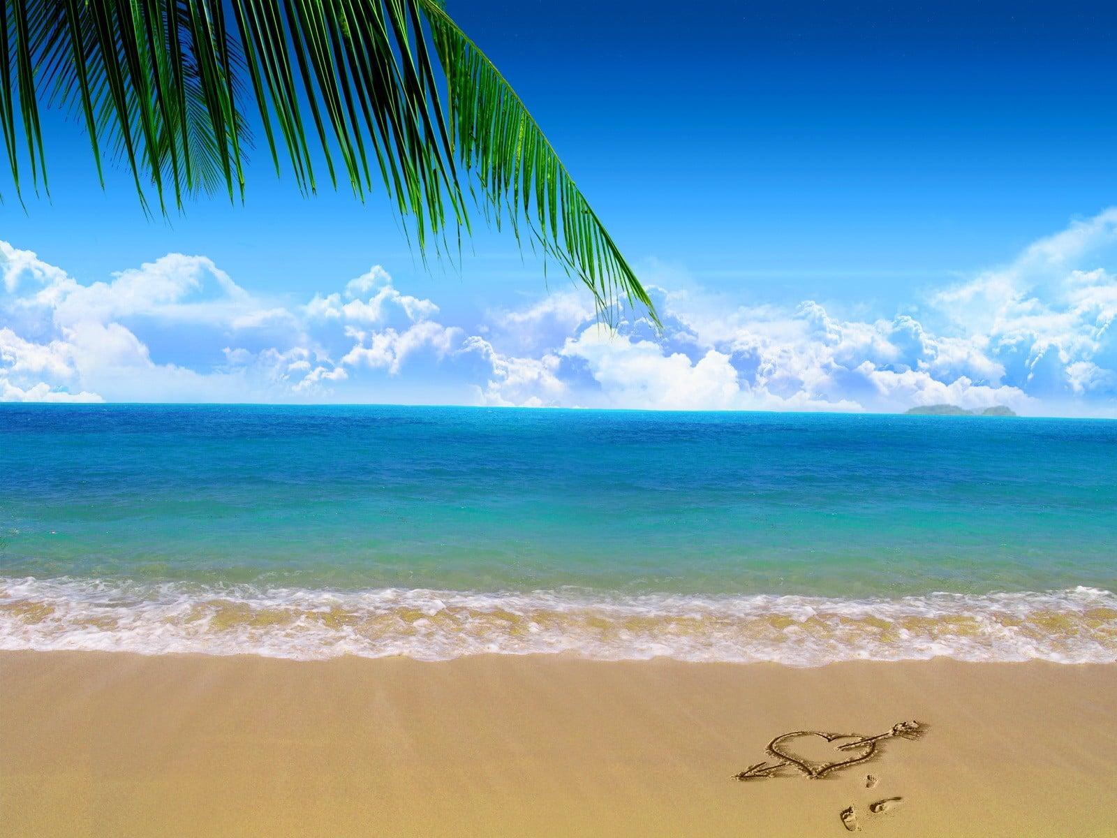 sahil kenarı