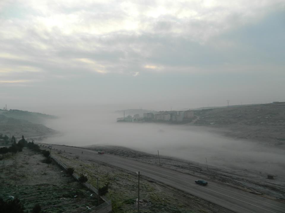 sisli bir sabah