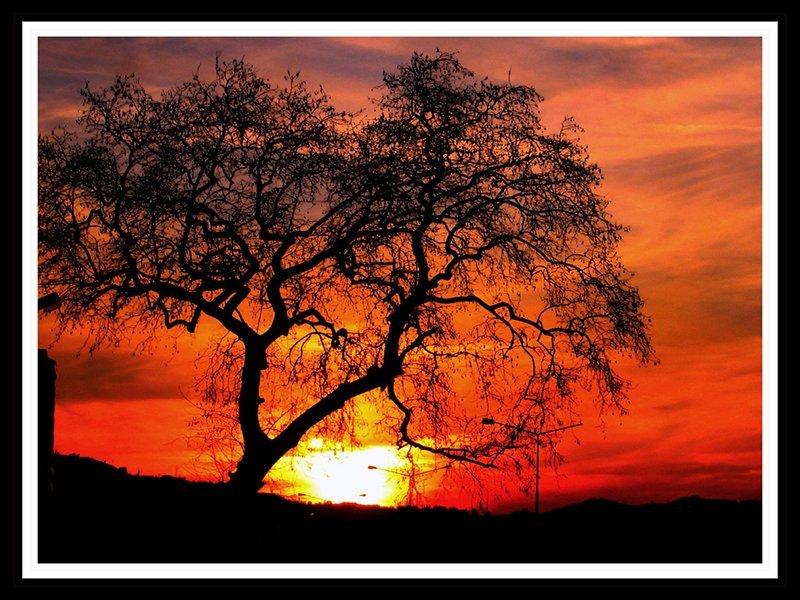 sonbahar ve gün batımı