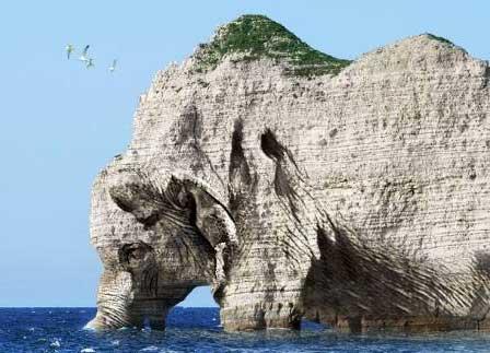 taşlaşan fil