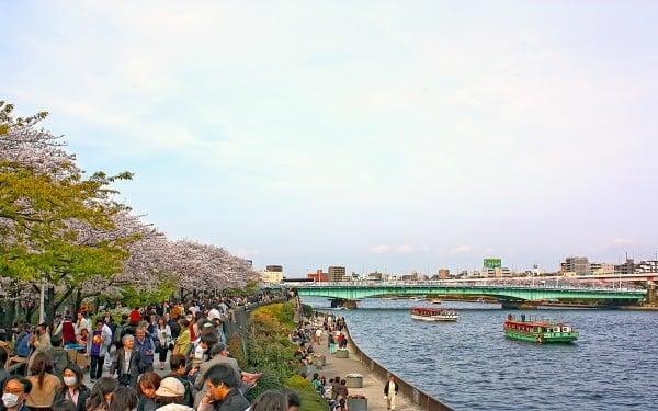 tokyo sumida nehri