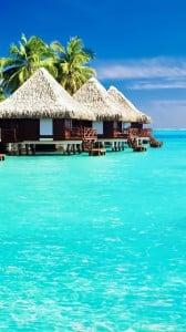 tropical evler 1080x1920