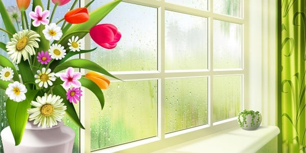 Çiçekli Pencere Twitter Başlık Resmi