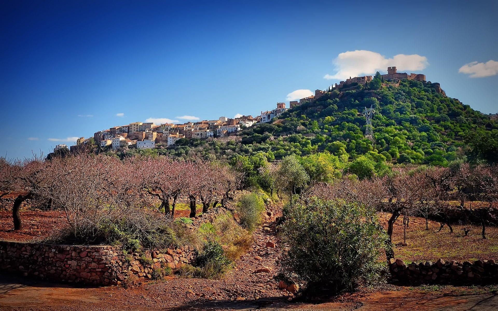 villafames ağaçlar ve kale