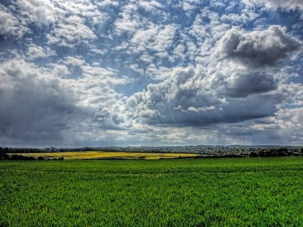 winchester bulutlar ve otlar