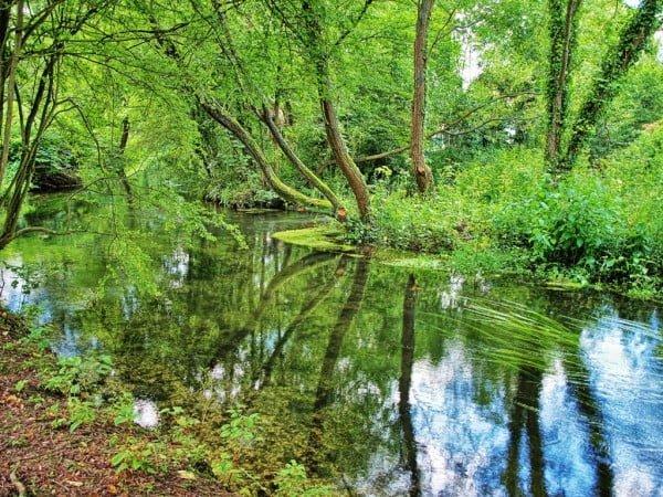 winchester harika nehir