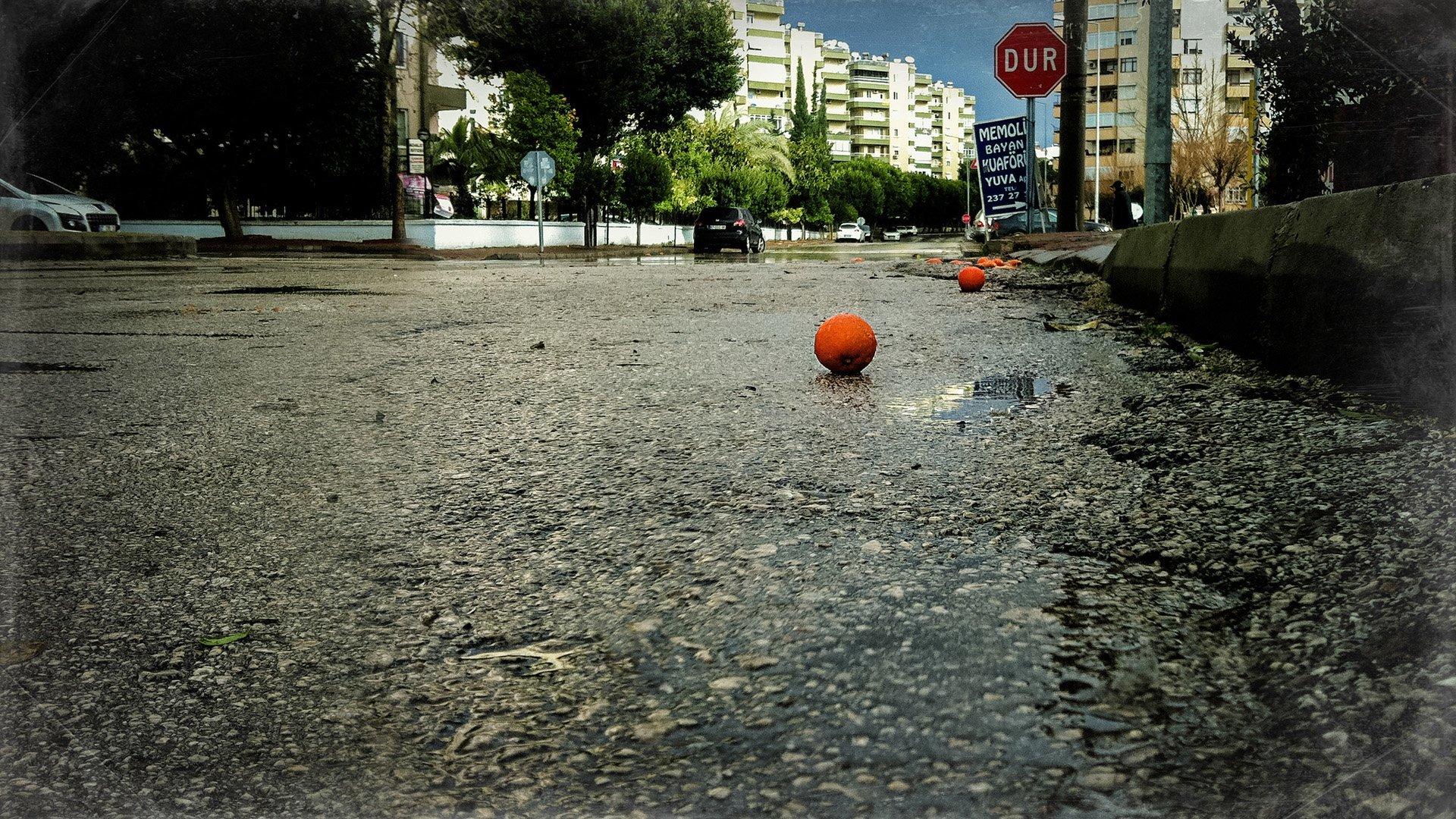 yağmurun ardından