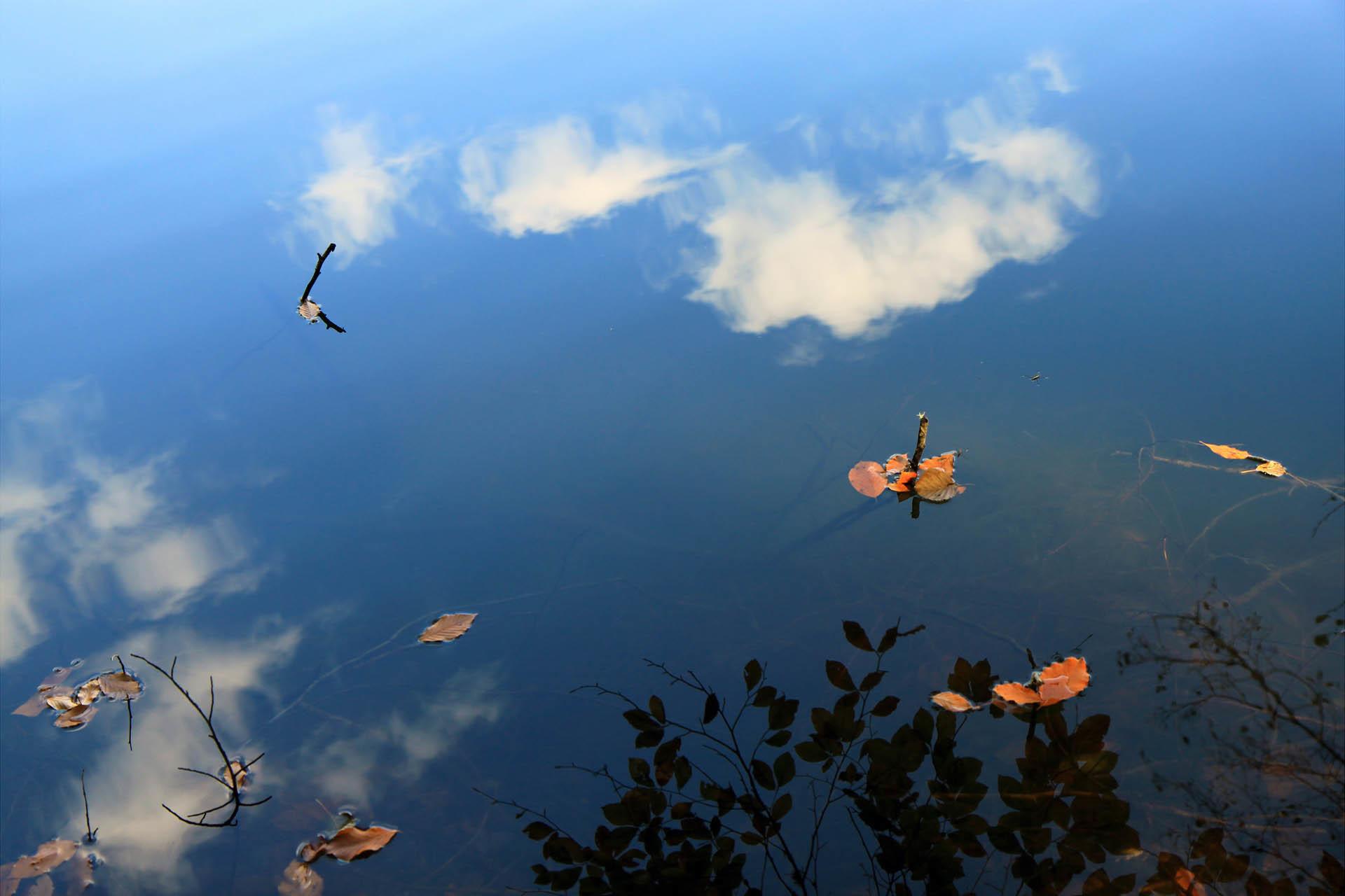 yedigöller milli parkı fotoğrafları
