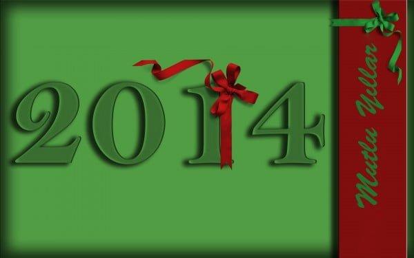 yeni yıl resmi 2014