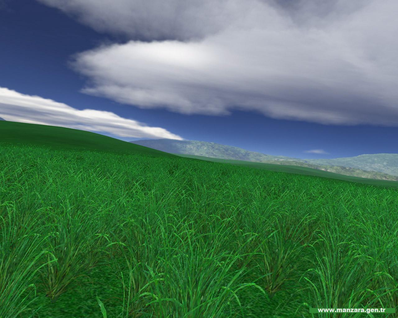 Yeşil ve mavi – 1
