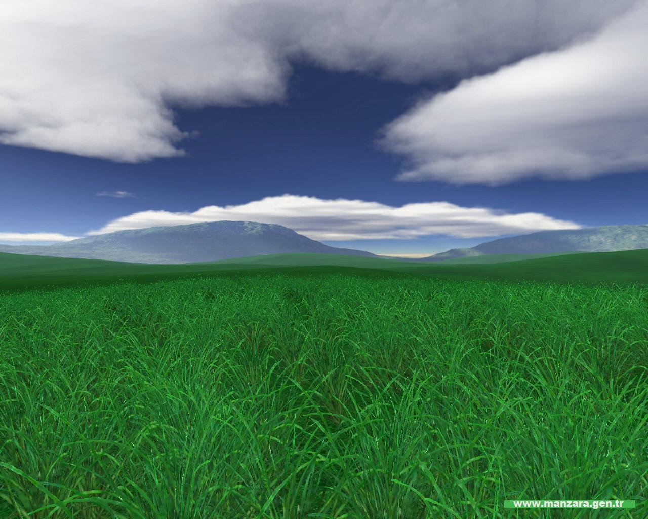 Yeşil ve mavi – 2