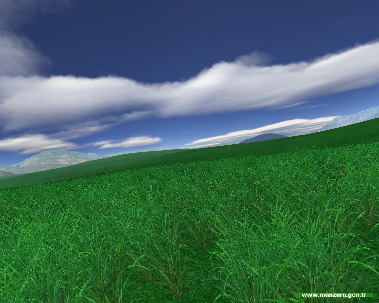 Yeşil ve mavi – 3