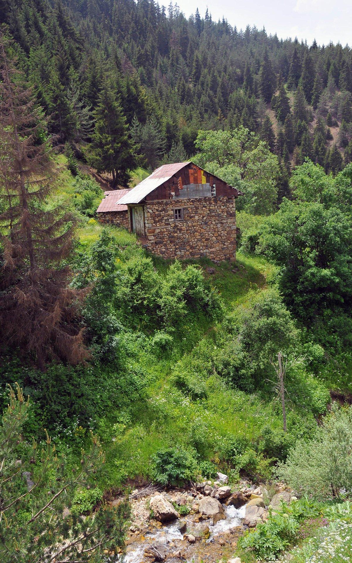 zigana doğa ve ev